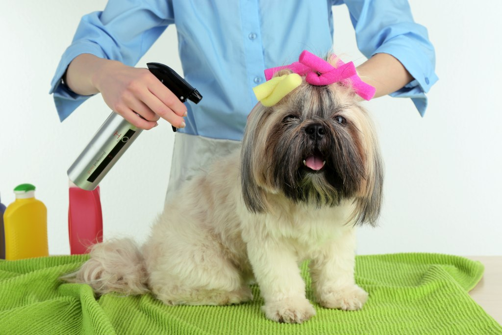 mobile groomer stockton